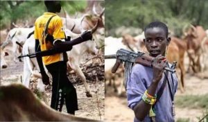Fulani Militias Ambushed Two Natives From Bokkos LGA of Plateau State