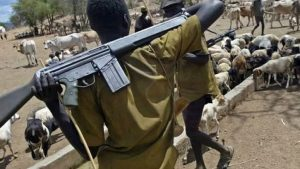 Fulani Militias Attacked Farmers in Vatt Community of Barkin Ladi LGA, Plateau State