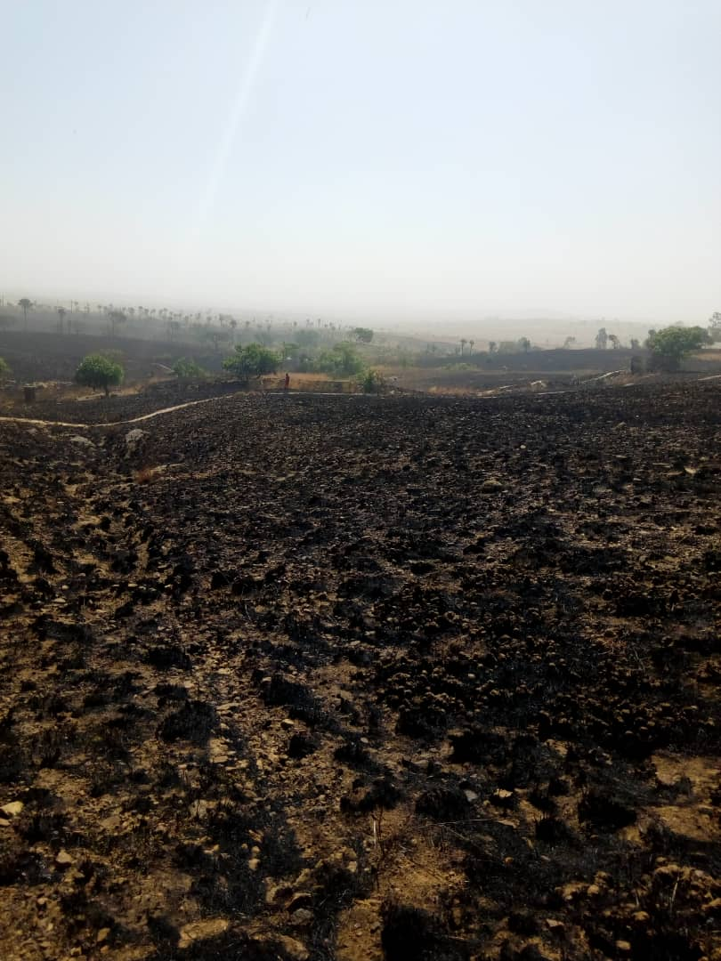 SUSPECTED FULANI HERDSMEN SET ABLAZE GRASS RESERVED AREA IN PLATEAU
